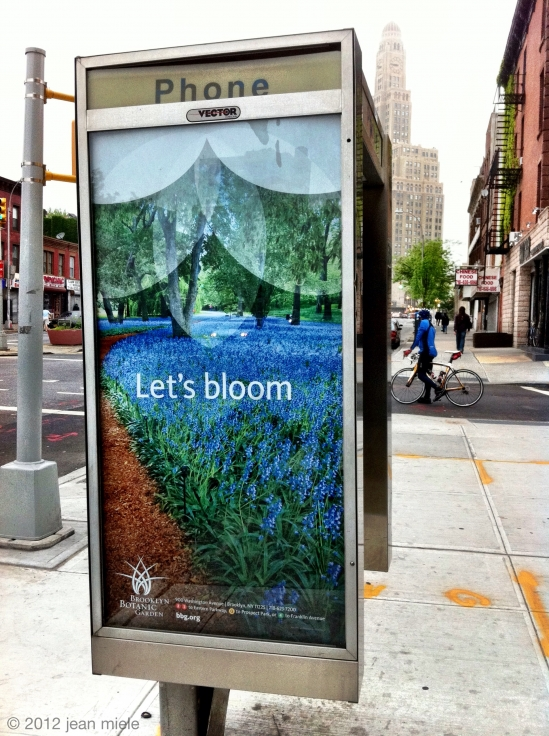 Brooklyn Botanic Garden used another shot of mine! This time on buses & phone booths.